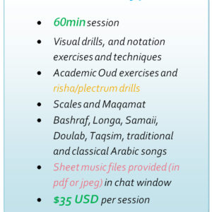 Package of 4 Oud Lessons over Skype (Online) – $120 USD – Oud player